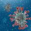 coronavirus skin protects